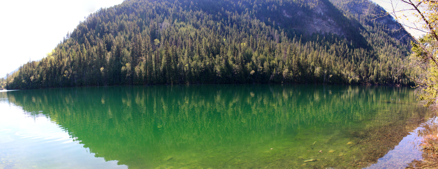 The sun is shining and the weather is sweet here echo for Echo lake ca cabine